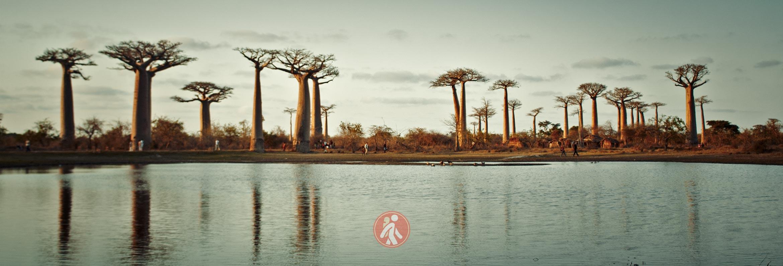 MADAGASCAR GUÍA DE VIAJE