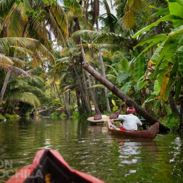 THE GREAT BACKWATERS