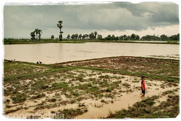 Paisajes de Camboya