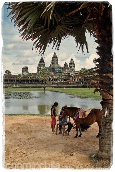 Angkor Wat desde uno de sus estanques