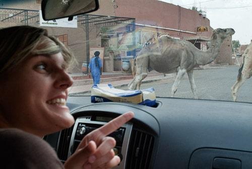 Ya empezábamos a ver camellos...