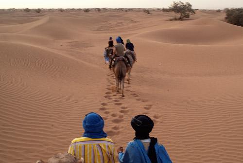 Foto algo movida (por culpa del camello) por las dunas
