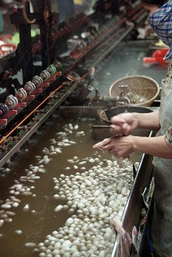 Fábrica de extracción de seda
