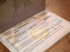 Cómo sacarse el visado de India de la forma más fácil. Actualizado