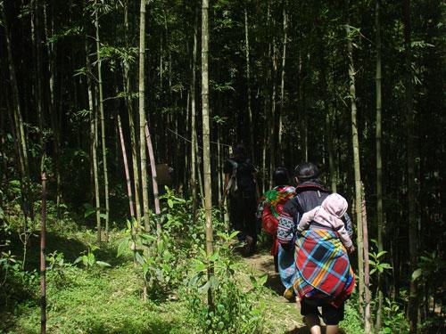Senderismo con las mujeres Hmong