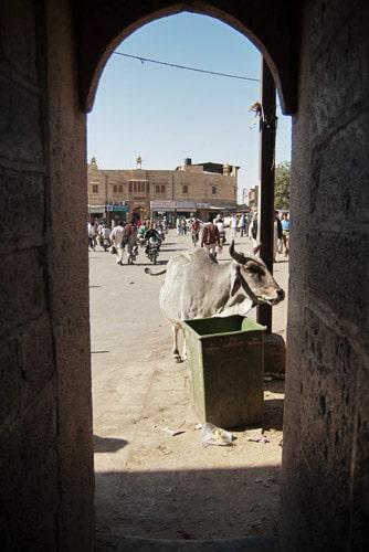 "Entrada ""peatonal"" de la puerta de Amar Sagar"
