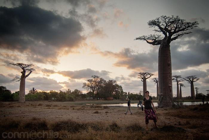 Carme en la avenida del baobab