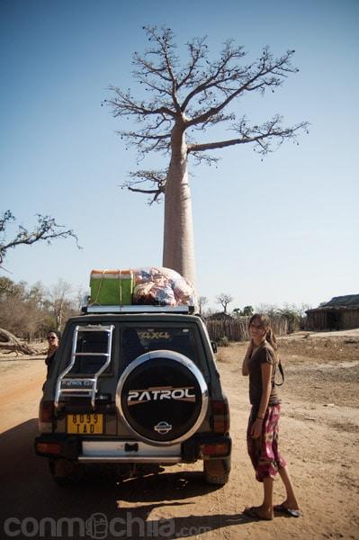 Avistando baobabs de camino a Morondava
