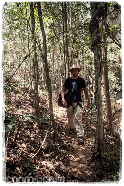 Y vuelve a llegar la selva a nuestro camino