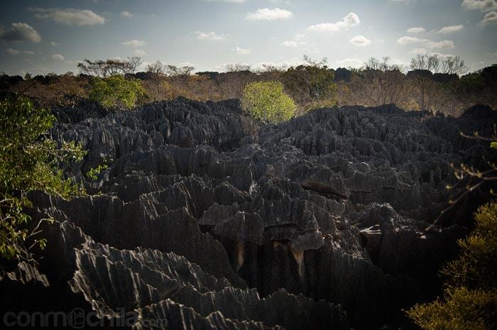 La roca característica del Tsingy