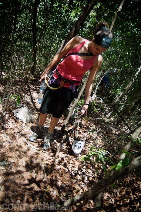 La selva alrededor del Grand Tsingy