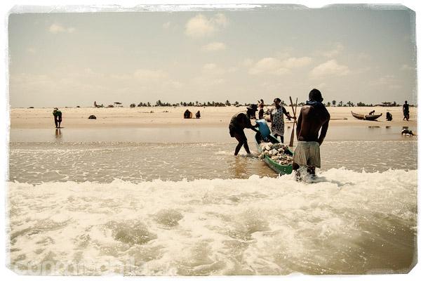 Los pescadores saliendo a la arena con el pescado