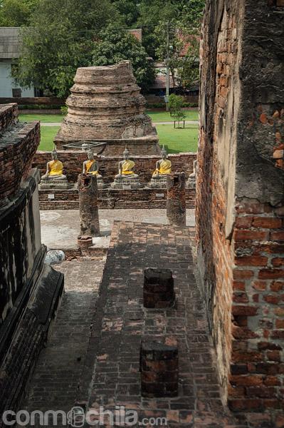 Budas alrededor de la estupa