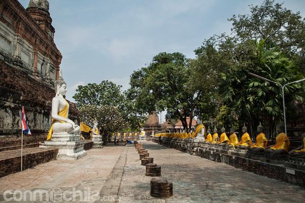 Hilera de imágenes de Buda