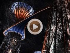 Vídeo 8 Singapur – Cascadas, árboles gigantes y miles de flores en Gardens by the Bay