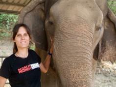 Memoria de elefante (3)