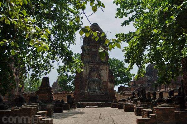 Una imagen de un Buda
