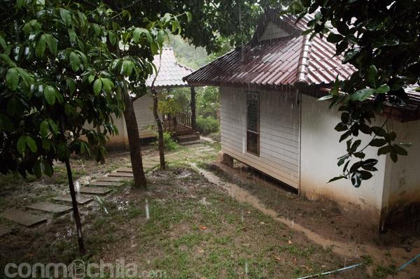 Vistas desde el porche (lloviendo)