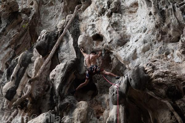 Detalle del escalador