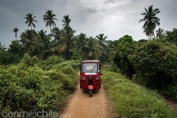 Buscando la ruta entre caminos de tierra