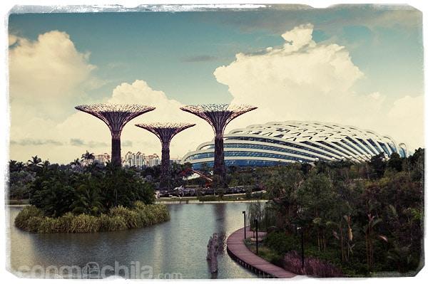 Vistas de los árboles artificiales