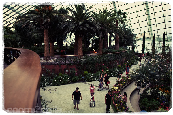 Otra vista del Flower Dome