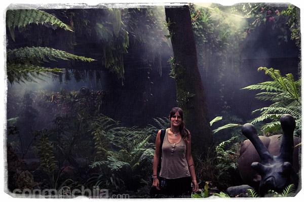 En la densa y húmeda jungla