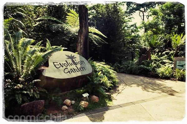 Entrada al Evolution Garden
