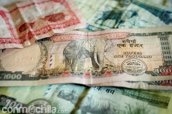 Los animales de los billetes de Nepal