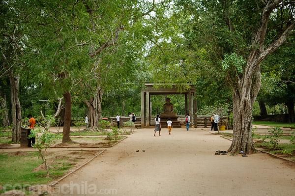 El camino de tierra que lleva a la estatua Samadhi de Anuradhapura