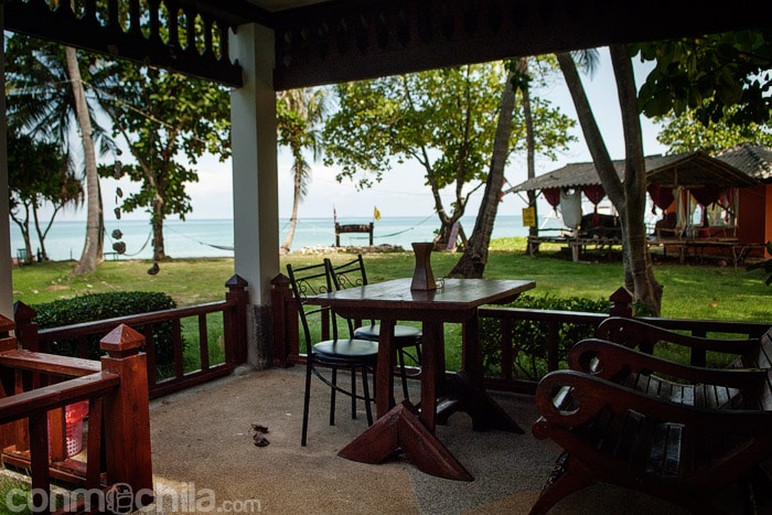 Vistas desde la terracita del bungalow
