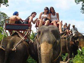 Turistada clásica en Tailandia