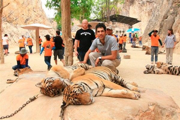 Otro clásico tailandés. ¡Vivan la turistadas con animales!