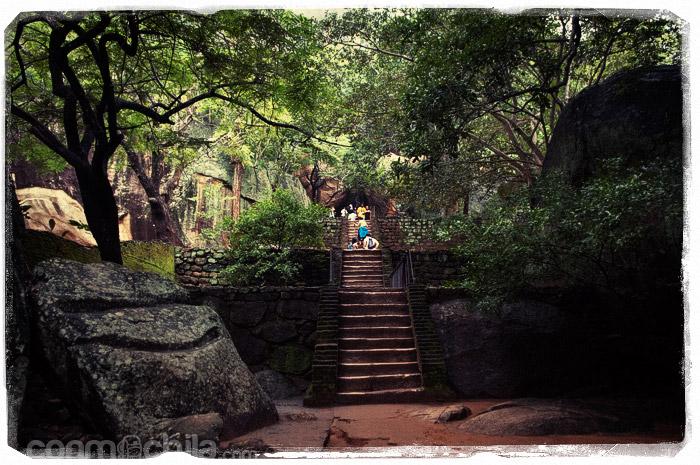 Las escaleras de piedra entre la vegetación