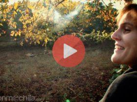 Vídeo 7 - Viaje a India 2013