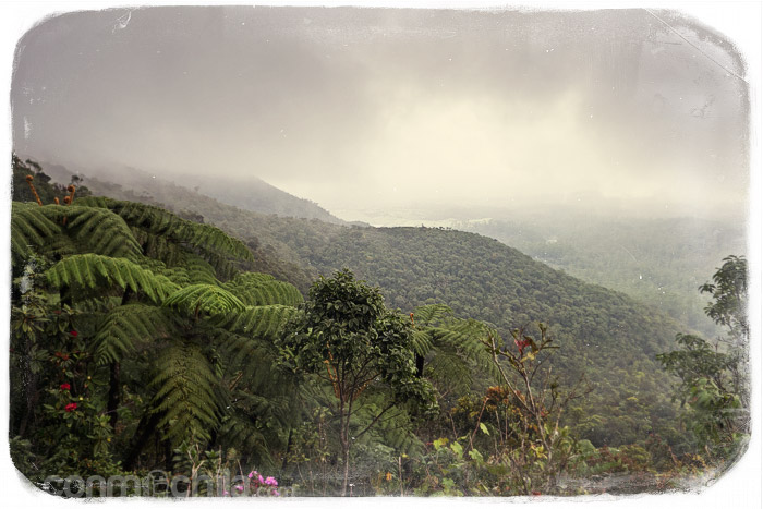 El paisaje del parque natural