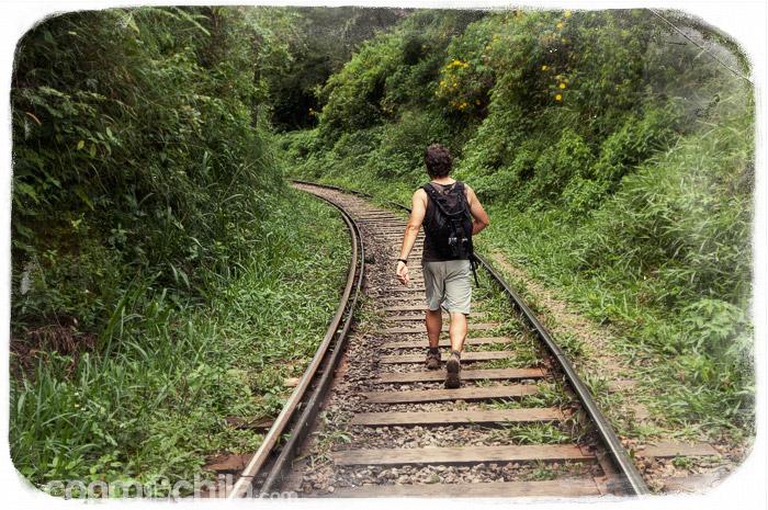 ¡Por fin las vías del tren otra vez!
