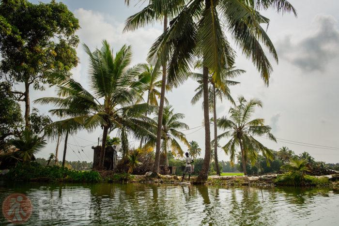 Otra imagen de los backwaters