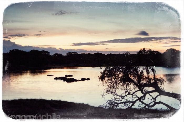 En un viaje a Sri lanka no puede faltar la visita a alguno de sus parques nacionales