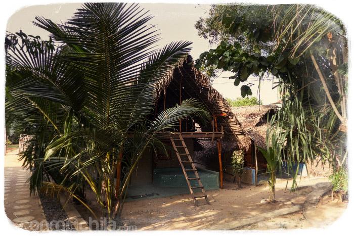 Nuestra cabaña
