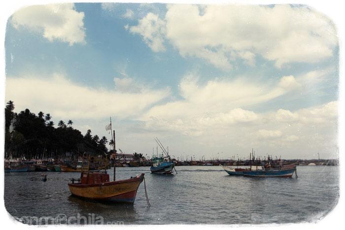Llegada al puerto de Mirissa