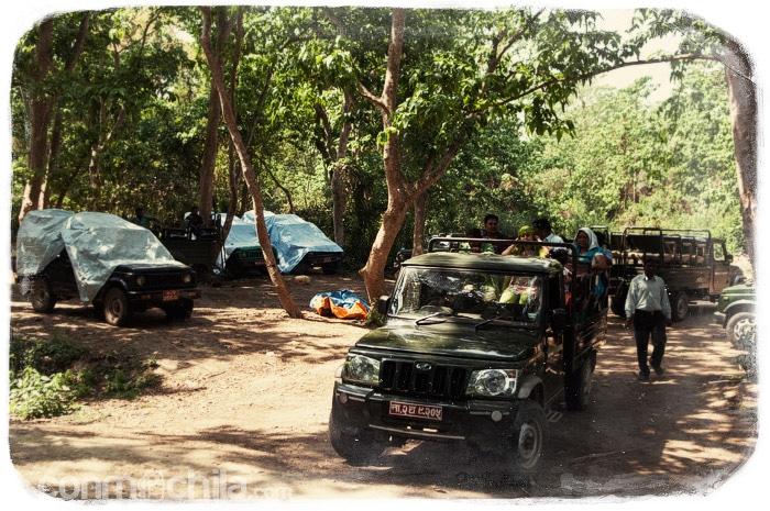 Comenzamos el safari en jeep