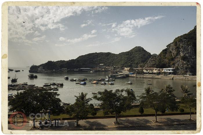 El puerto de Cat Ba desde nuestro hotel
