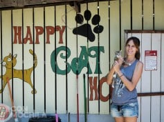 Lanta Animal Welfare, voluntariado con animales en Tailandia