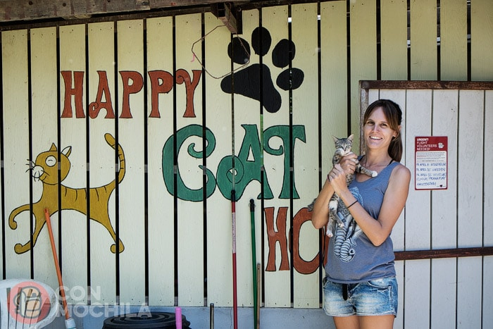 """Happy Cat House"" como en casa"