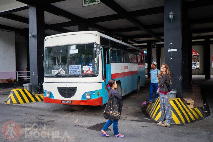 Esperando el autobús