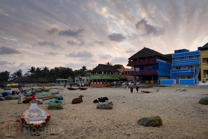 Barcas y vacas en la playa de Mamallapuram