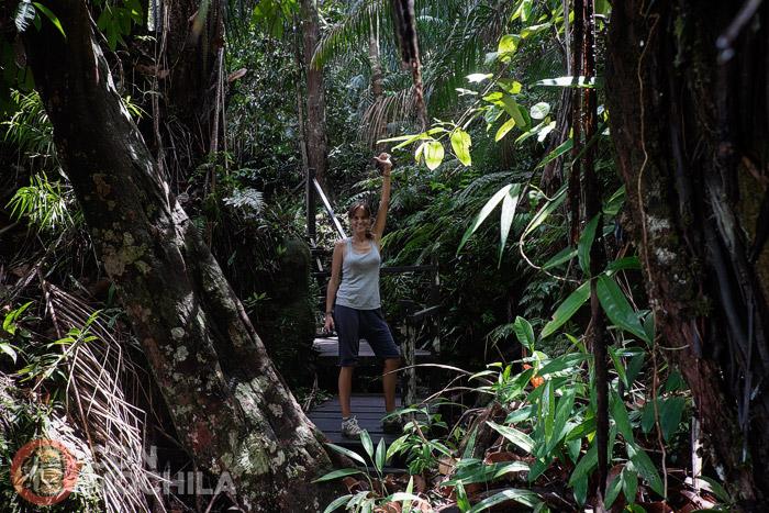 Un poco de jungla