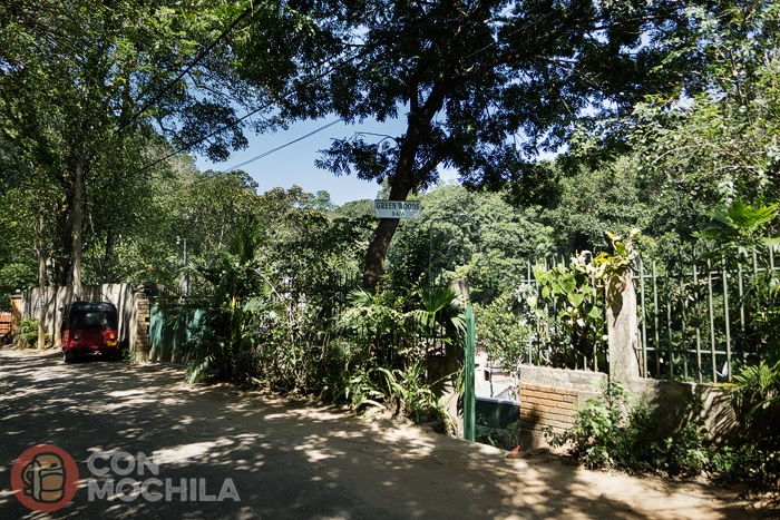 La entrada a Green Woods guesthouse