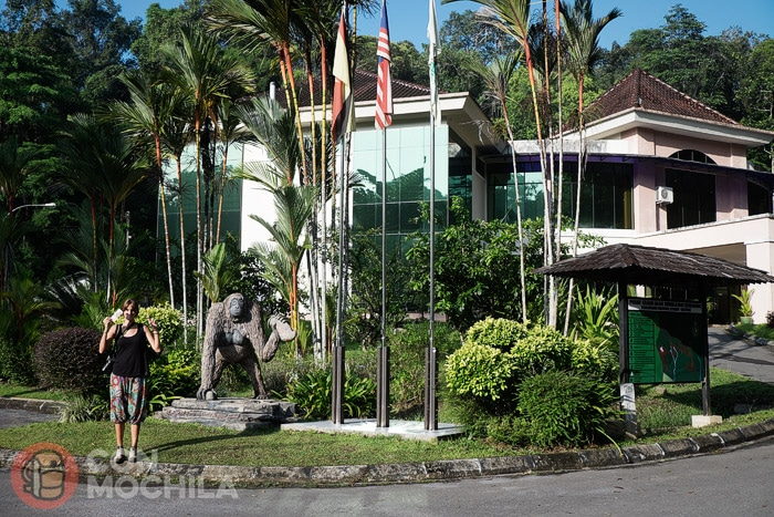 Entrada al Semenggoh Wildlife Centre